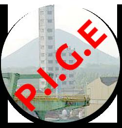 logo association pige evin